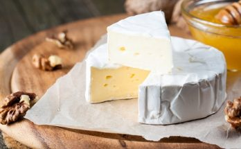 Artisan Camembert Cheese Supplier